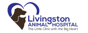 livingston logo 1